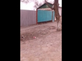коруге кенес беремын