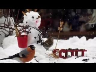 Снеговик Антошка, песня Марины Басовой