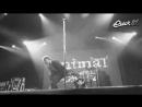 Animal ДжаZ - Прощай! 2013