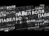 Павел Воля Большой Stand-Up (2014) BDRip vkcomFeokino
