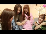 Shabet On Air Episode 34