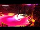 Hamada KUTA в Волгоградском Цирке