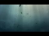 Вселенная Стивена Хокинга - Рассказ обо всем - Краткая история времени