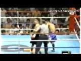 Реффери улетает в KO (Blur) l Boxing Vines