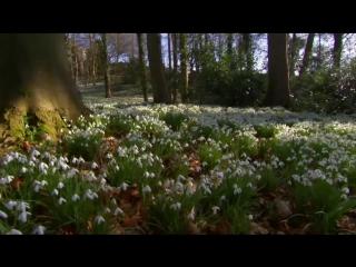 BBC. Британские времена года (2013) HD 720 - 1 серия