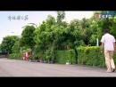 [AS-akura] Dandelion Love  Любовь одуванчика (1040)