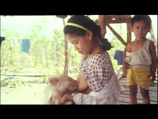 (hd) шокирующая азия 3: во власти тьмы / shocking asia 3: after dark (1995)
