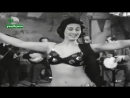 Aliii 1960Yslcm