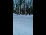 Третий этап мужской эстафеты. Зимние областные сельские игры.