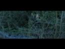 Дневной свет (2013) супер фильм 7.210