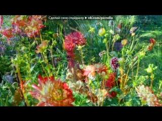 «Все цветы - женщине!» под музыку Валентин Левашов - Вальс из к/ф Любовь и Голуби. Picrolla