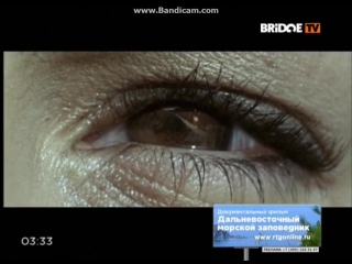 The Rasmus - First day of my life (BRIDGE TV)