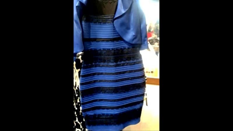 Какого цвета платье Бело-золотое или сине-чёрное