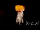 Dolphin | Кокон