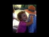 Costa-Rica, Jan 2014 под музыку Юрий Пашалы (аккордеон) - Вальс из к-ф Мой ласковый и нежный зверь (Е.Дога). Picrolla