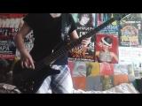 Placebo - English Summer Rain (Bass cover)
