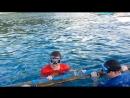 Купание с китовыми акулами. Филиппины, о. Себу, д. Ослоб. Февраль, 2015 год.