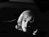 A Light in the Gloom (dedicated to Marilyn MONROE )
