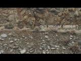 Fiction Plane - Where do we go From Here (Teaser)