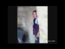 Изнасилования ослика-))