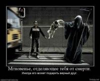 Толян Плешко, 4 мая 1987, Киров, id101486369