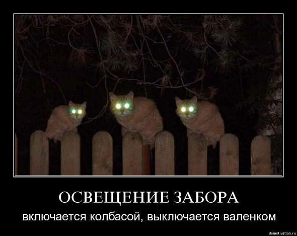 http://cs636.vkontakte.ru/u13318617/118696025/x_3bd8a0ee.jpg
