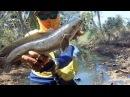 Как рыбачат в Таиланде | Змееголов