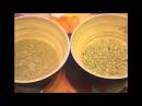 Очищение от паразитов( глисты, грибы, лямблии, вирусы и др) при помощи полыни. Полынная терапия.