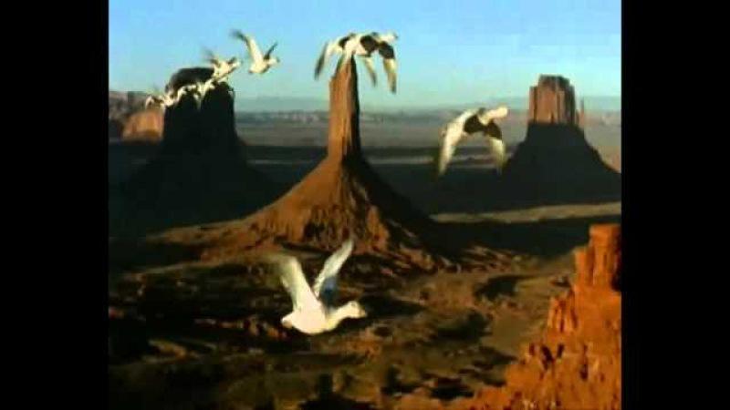 Путешествие с ветром на крыльях любви