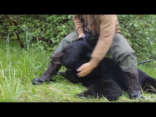 Медведь людоед. Жить. Людо медвеед.