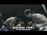 BOXERS PUNCHED THROUGH THE ROPES #6 (Boxing Vines) | vk.comboxingvines
