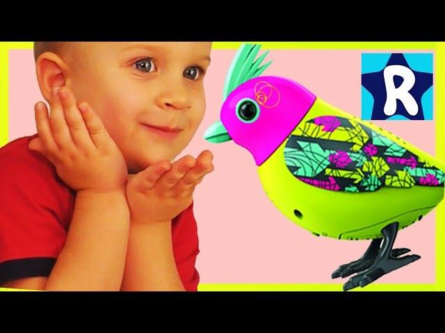 ★ DigiBirds ПТИЧКИ Поют Разные Мелодии Хором Видео для детей DigiBirds Friends DigiOwl Singing