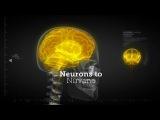 От нейронов к нирване Медицинское применение психоделиков (2013)