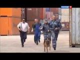 Русский боевик Собачья работа боевик, криминал
