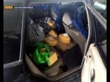 Жительница Калининграда пыталась ввезти в Россию почти треть тонны польского сыра