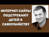 Владимир Соловьев: Интернет-сайты подстрекают детей 25.05.2016