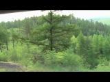 Россия из окна поезда Улан-Удэ - Чита