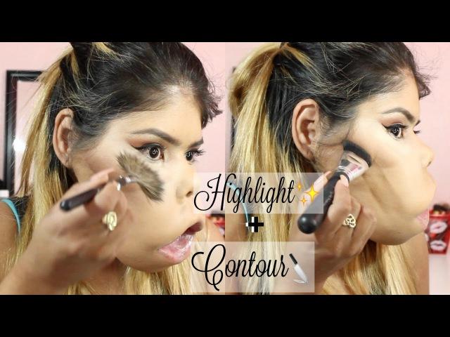 HighlightContour | Gorda66