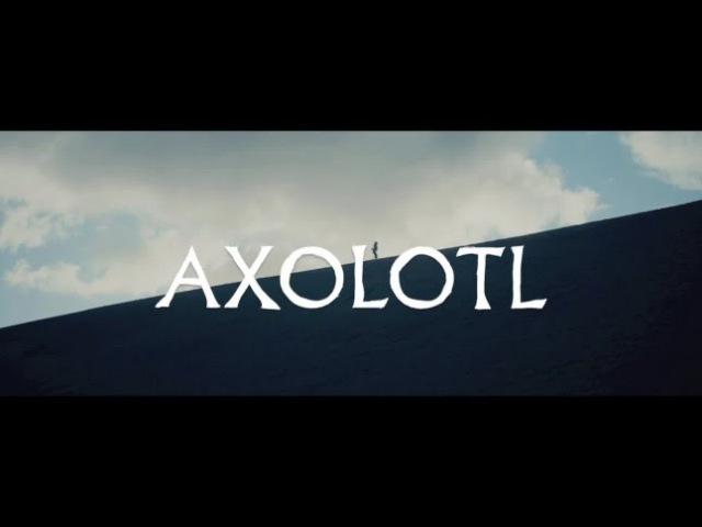 The Veils - Axolotl (ft. El-P) (Official Music Video)   Pitchfork