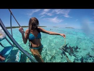 Наш отдых на Мальдивах (Go Pro Hero 4 Black)