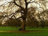 Oasis - Songbird Britpop