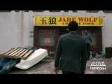 Этот взгляд на новый и улучшенный Jade Wolf.