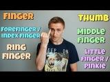 Названия пальцев РУК и НОГ в английском. FINGERS vs TOES