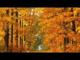 autumn leaves - toots thielemans &amp kenny werner