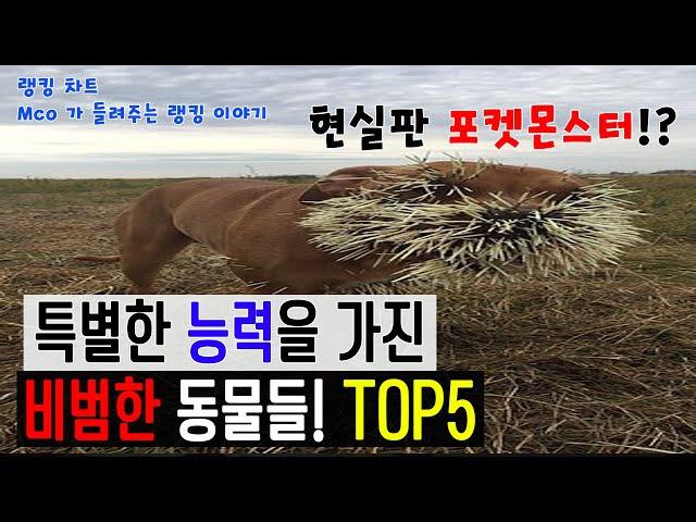 [랭킹 차트] 현실판 포켓몬스터? 특별한 능력을 가진 비범한 동물들! TOP5 (Mco가 들47