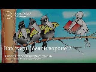 """Как жить """"белой вороне"""" - советы Александра Литвина"""
