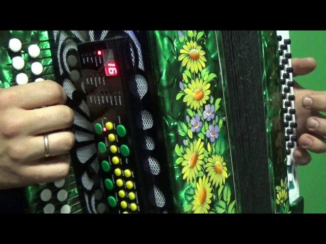 Инструкция для новичков МИДИ/midi accordion » Freewka.com - Смотреть онлайн в хорощем качестве