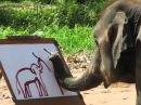 Невероятно! Слон рисует автопортрет!