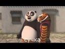 Панда пизда Rytp 1