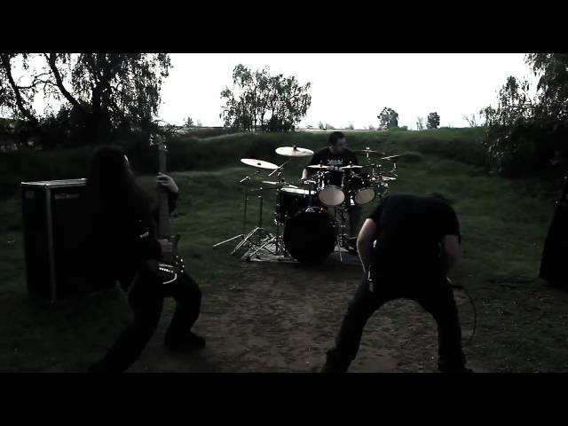Brain Drill Beyond Bludgeoned OFFICIAL VIDEO